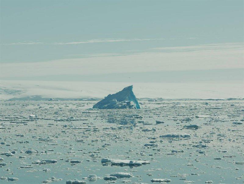 Santiago Vanegas - Antarctica 2929